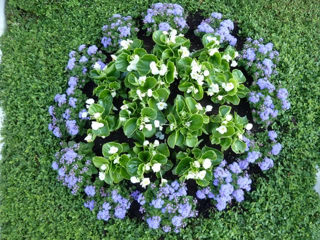 grabbepflanzung sommer beispiele grabbepflanzung im sommer beispiele f r alle standorte. Black Bedroom Furniture Sets. Home Design Ideas